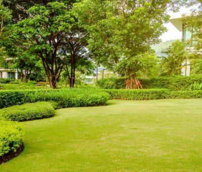 amenagement paysager choisir monaco jardin.jpg
