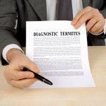 Diagnostic termite : Grenoble, zone obligatoire ?