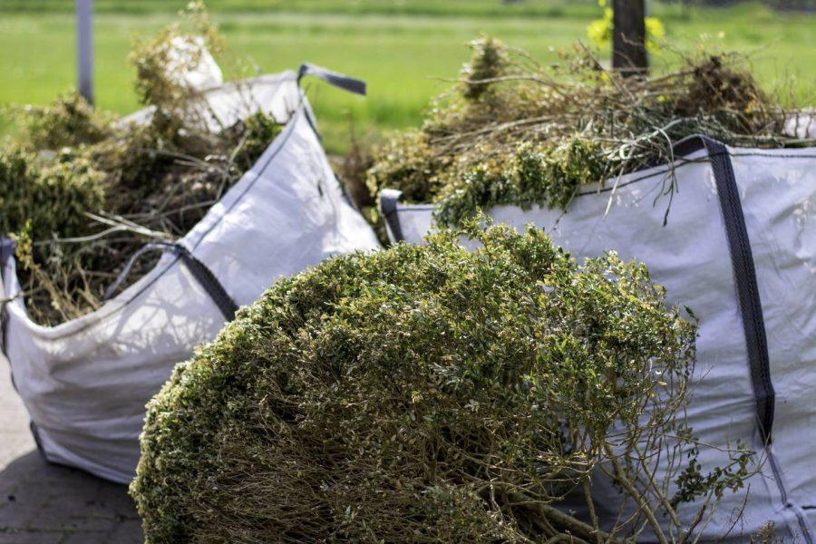 déchets verts, jardin