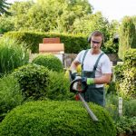 Comment choisir un professionnel spécialisé dans l'aménagement paysager ?
